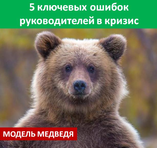 Модель медведя и 5 ошибок руководителя в кризис